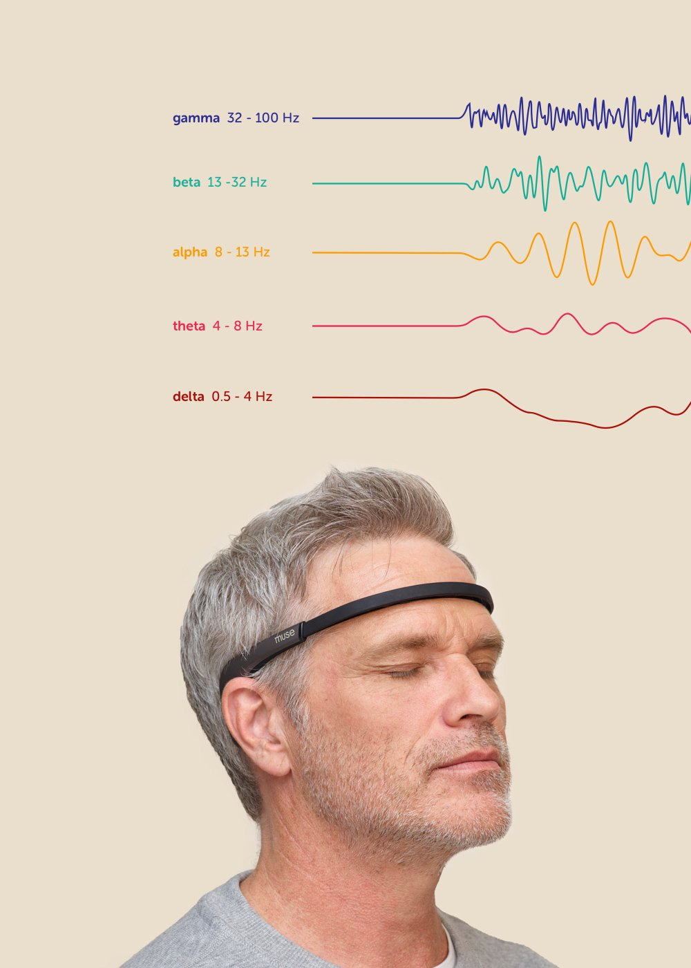 A deep dive into brainwaves.