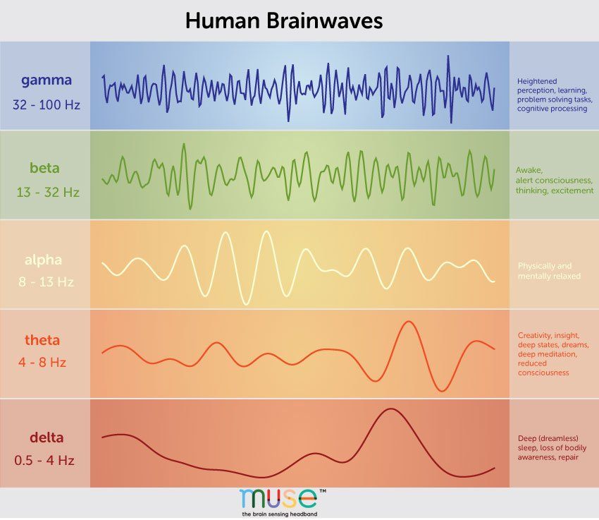 A Deep Dive Into Brainwaves: Brainwave Frequencies Explained